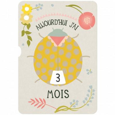 Cartes à disque souvenirs Ma première année (0-12 mois)  par Milestone Cards