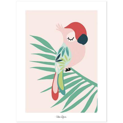 Affiche perroquet rose (30 x 40 cm)  par Lilipinso