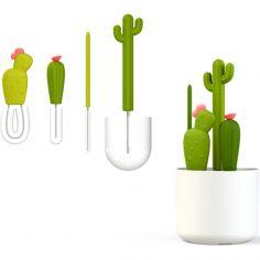 Lot de 4 goupillons cactus