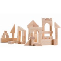 Blocs de construction (50 pièces)