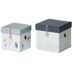 Lot de 2 boîtes de rangement carrées bleues