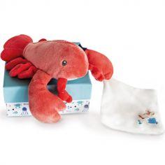 Coffret peluche avec Coffret doudou homard corail (17 cm)