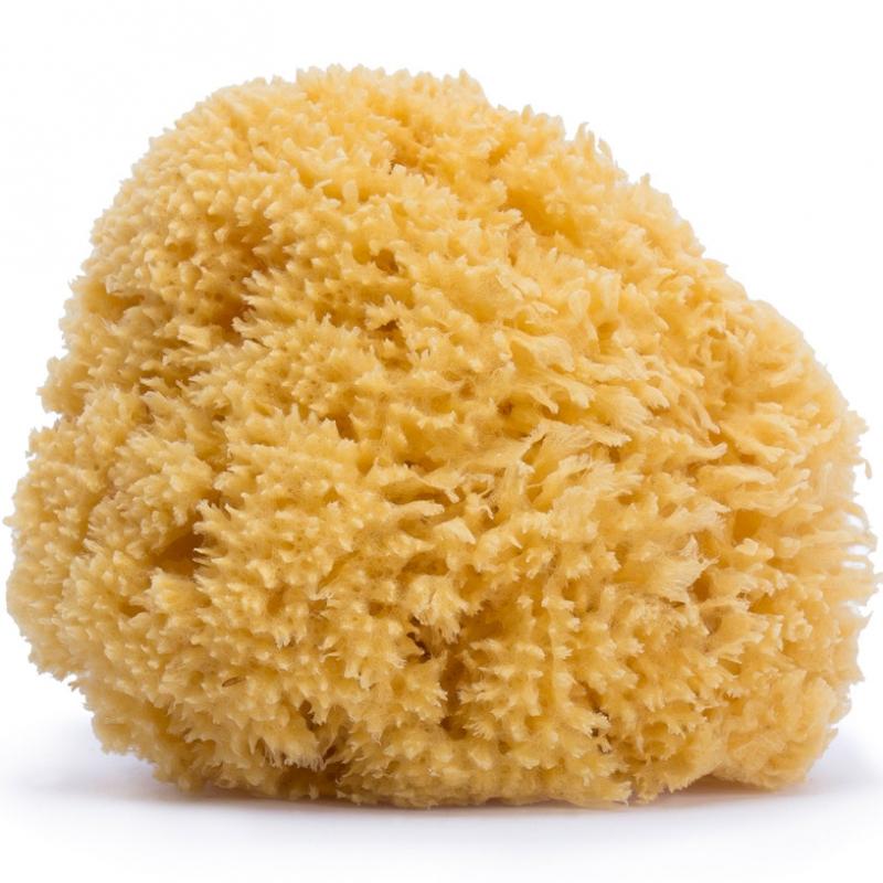 Grande éponge en fibre naturelle
